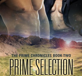 Prime Selection by Monette Michaels