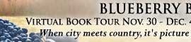 BlueberryBoys_TourBanner